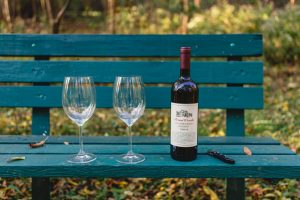 Two Glass and a bottle of wine on a park bench