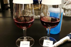 Production Guide: Reducing Copper in Copper Sulfate Treated Wines